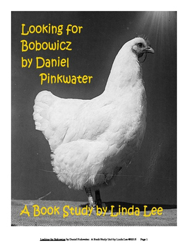 Looking for Bobowicz by Daniel Pinkwater:  A Book Study