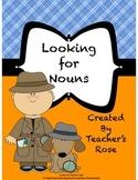 Nouns: Proper Nouns, Common Nouns, Possessive Nouns