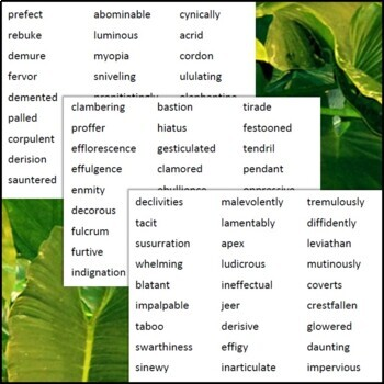 Lord of the Flies Vocabulary Paper Slide Videos