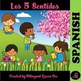 Los 5 Sentidos Spanish