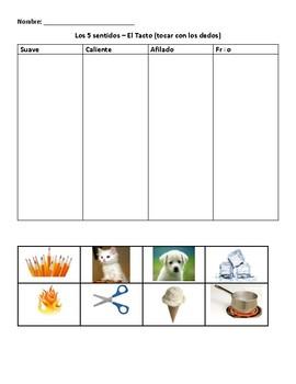 Los 5 sentidos - sorting and classifying