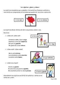 Los Adjetivos: género y número Practice Booklet