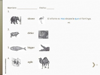 Los Animales Unit 3