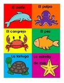 Los Animales del Océano - Ocean Animals
