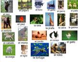 Los Animales en Español - Big Bundle