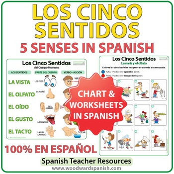 Los Cinco Sentidos - Five Senses in Spanish