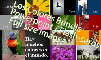 Los Colores - Bundle Pack! - Powerpoint - flashcards - full size images
