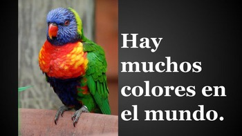 Los Colores - Powerpoint Presentation with real photos