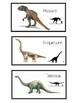 Los Dinosaurios (adjetivos)
