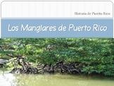 Los Manglares de Puerto Rico