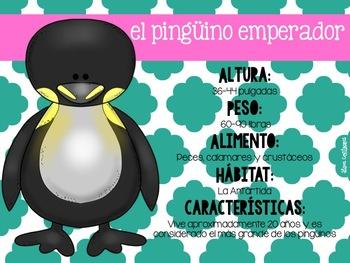 Los Pingüinos {A Penguin Unit in Spanish}