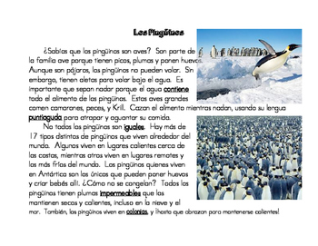 Los Pingüinos Close Read