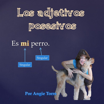 Los adjetivos posesivos PowerPoint for Spanish One