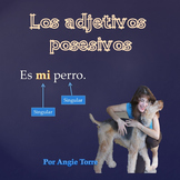 Los adjetivos posesivos PowerPoint for Spanish One