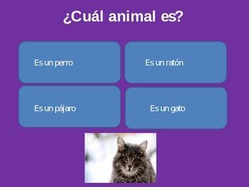 Los animales/ Animals in Spanish
