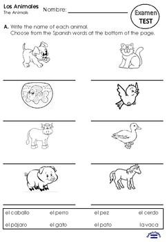 Los animales TEST 1st grade