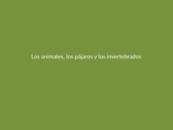 Los animales - Vocab/pictures PowerPoint for teaching anim