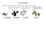 Los animales - Vocab/pictures for introducing animals in Spanish!