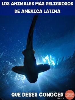 Los animales más peligrosos de América Latina que debes conocer (Vol. 1)