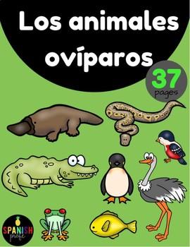 Los animales oviparos (Oviparous Animals in Spanish)