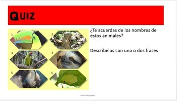 Spanish: adjective agreement, large numbers, animal names, simple descriptions