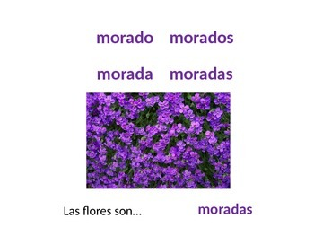 Los colores - Spanish colors