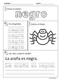 Los colores (Spanish colors activity)