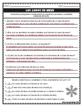 Los copos de nieve Skill Builders in Spanish