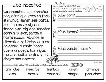 Los insectos - CLOSE READING, Aprendiendo a leer