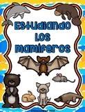 Los mamíferos - Spanish Mammals unit