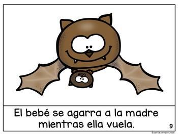 Los murciélagos/el ciclo de vida ~ Bat Facts Reader & Lifecycle Reader Bilingual