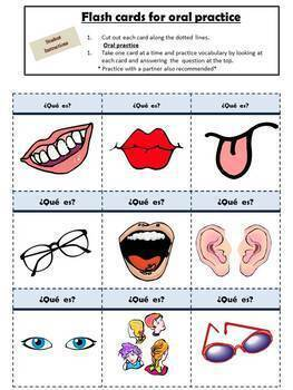 Spanish Adjectives, Face and Hair With Tener Activiy Packet