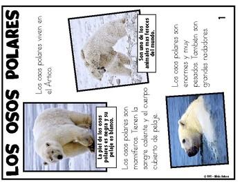 Los osos polares: Un cuento fantástico con animales y un texto informativo