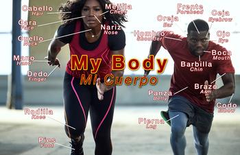 Los partes del cuerpo