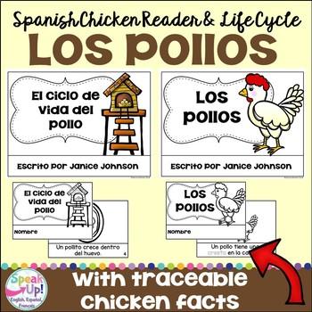 Los pollos ~ El ciclo de vida del pollo ~ Spanish Chickens Reader & Lifecycle