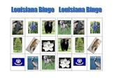 Louisiana Bingo Game