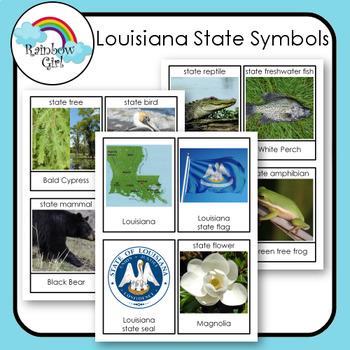 Louisiana State Symbols By Rainbow Girl Teachers Pay Teachers