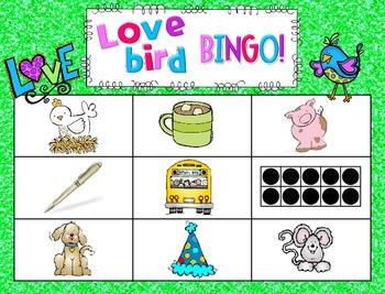 Love Birds! CVC Bingo {freebie!}