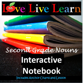 Love Live Learn Nouns Interactive Notebook
