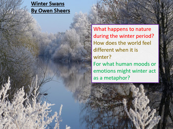 Love and Relationships - Winter Swans