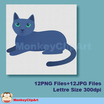 Lovely Cats Clip art Collection