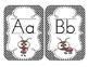 Lovely Ladybug Alphabet Cards