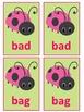 Lovely Ladybugs CVC Match Game