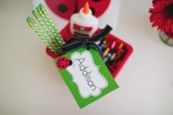 Classroom Decor Lovely Ladybugs Multipurpose Labels - Print