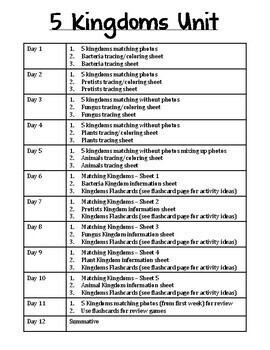 Low / Modified 5 Kingdoms Science Unit - Includes Lesson Plans, Activities, Test