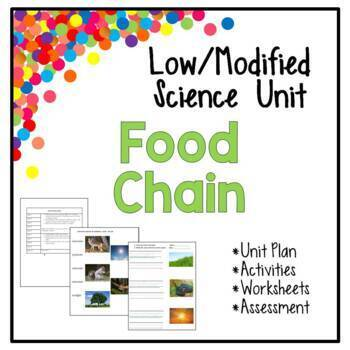 Low / Modified Food Chain Unit - Includes Lesson Plan Worksheets Activities Test