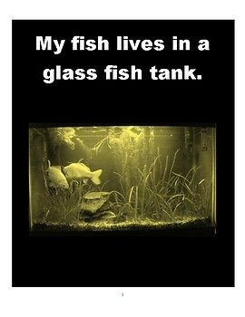"""Low Vision Book: Pet Fish. """" I Can Take Care of My Pets with my Hands,"""" series"""