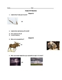 Low level comprehension questions for ch. 15-17 in Hatchet