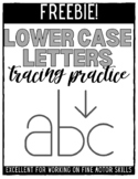 Lower Case Letters Tracing Inside the Lines - FREEBIE