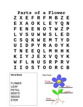Lower Elementary Parts of a Flower Word Search